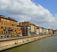 Buildings along the river, Pisa, Italy by Samantha  Goode