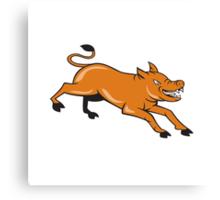 Angry Pig Jumping Attacking Cartoon Canvas Print