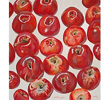 Beautiful red apples Photographic Print