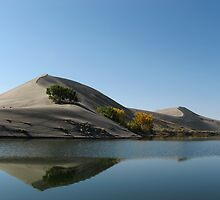 Bruneau dunes at Mountain Home by singlong