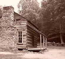 Cabin in sepia by Lorie Warren