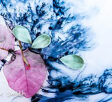 Pink & Blue by Sally Smith