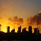 Skyscrapers, Sydney by Of Land & Ocean - Samantha Goode