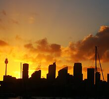 Skyscrapers, Sydney by Samantha  Goode