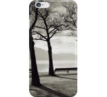 Laketrees in Winter iPhone Case/Skin