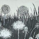 Dandelions by Susan Duffey