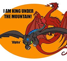Toothless and Smaug - Dragon Crossover by JZanderK