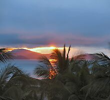 Dawn At hamilton Island by conorsmum