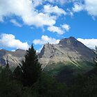 Glacier National Park by Julene Mendenhall