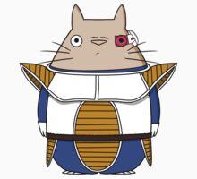 Totoro Sayan Kids Clothes