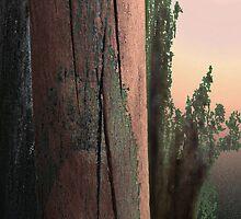 Experiment 1 - Wooddusk by Martilena