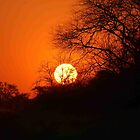 "MY AFRICAN SUNSET ""TODAY"" by Magaret Meintjes"