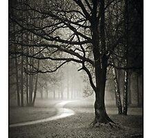 Dark Path by Ryan1050