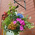 Hanging Basket with Summer Flowers by MidnightMelody
