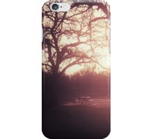Sunset Picnic iPhone Case/Skin