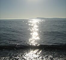 Sun Path by sesteele