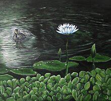 Duck Hole Creek by lightworker