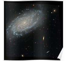 Hubble Space Telescope Print 0031 - Spiral Galaxy NGC 3370  - hs-2003-24-b-full_jpg Poster