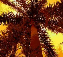 Palm Heat by florene welebny
