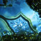 blue earth by paula whatley