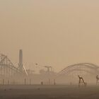 wildwood morning by mikepaulhamus