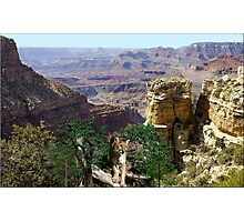 967-Cougar Canyon Vista Photographic Print