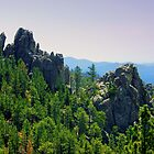 The Needles of the Black Hills by Julie's Camera Creations <><
