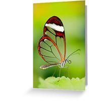 Transparent beauty Greeting Card