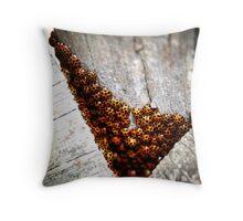 Ladybirds Throw Pillow