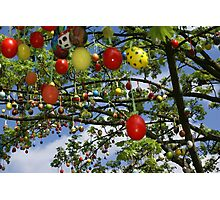 Easter Tree Photographic Print