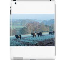 Belted Galloways grazing in winter iPad Case/Skin