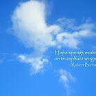 Sky Angel by HeatherOwen