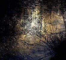 Reflections in  ice  by Debra Kurs