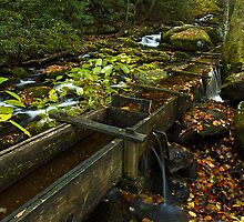 Old Mill Flume, GSMNP by ThomasRBiggs
