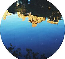 Central Park Pond by downtowndesigns