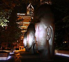 Chicago Millennium Park at Night by mvpaskvan