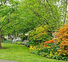 Philadelphia's Azalea Garden - Pennsylvania - USA by MotherNature
