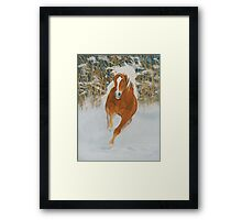 Fire 'N' Ice Framed Print