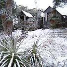 &#x27;Waldheim in Snow&#x27; by Roger Smith