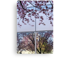 Spring Blossom Reflections and Architecture (1) Canvas Print