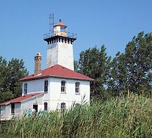 Saginaw River Rear Range Light by Francis LaLonde