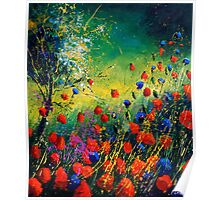 red and blue poppies 670808 Poster