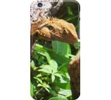 Luck Of The Dragon iPhone Case/Skin