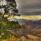 Big Bend Dawn by LarryGambon