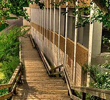 Boardwalk by Myron Watamaniuk