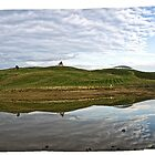 13 frame Panorama of the National Arboretum in Canberra/ACT/Australia by Wolf Sverak