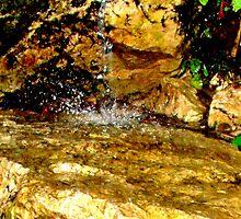 golden rock-splash by maxx