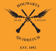 HOGWARTS QUIDDITCH TSHIRT HARRY POTTER T SHIRT TOP TEE WIZRADS TEAM SNITCH GAME Funny Geek Nerd by artfromearth