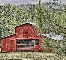 Red Barn in Georgia by Patricia Montgomery