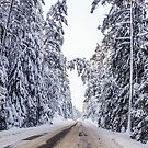 Winter's road by Mark Williams